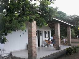 Excelente chácara com 30.000 m2 no munícipio de Taquarana-Alagoas