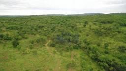 Fazenda com 145,20 ha na Zona Rural em Pontal do Araguaia-MT