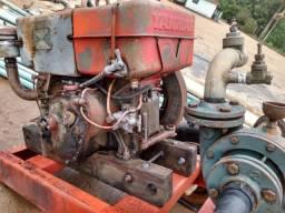 Motor yanmar. Pra irrigação