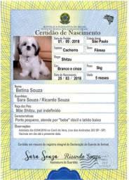 Título do anúncio: Registro para cães