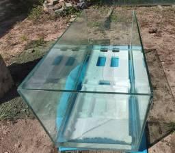 Aquarios Novos