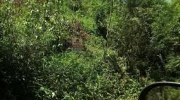 Chácara c/1,3 ha, em Montenegro - Faxinal - 330