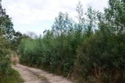 Área à venda, 291200 m² por R$ 2.200.000,00 - Serra Grande - Gramado/RS