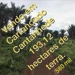 Terras em Carrancudo Cantanhede