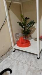 Bebedouro Fonte de água para Pets