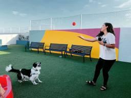 Pet Sitter e Walker (Animais) - Cuidadora e Passeadora Pet