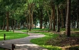 Lote Quinta do Bosque - Castanhal