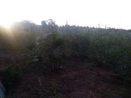 Vende-se terreno em Carlópolis PR