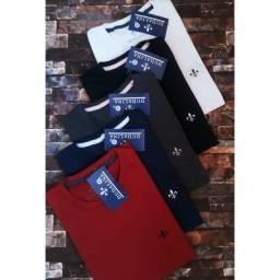 Kit c/5 camisetas sortidas da moda.
