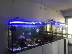 Aquário Jumbo - vidro extra clean