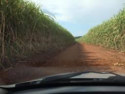 Sitio 4 alqueires em Nuporanga 600.000.00