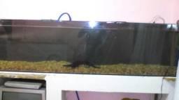 Vendo um aquário.400litros