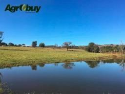 Fazenda localizada no município de Cachoeira - GO