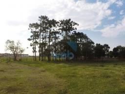Excelente terreno de esquina no Campo de Santana, próximo ao Supermercado Jacomar, com mai
