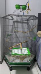 Viveiro de aves Bragança