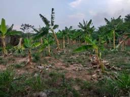 Título do anúncio: Terreno na vila do Incra
