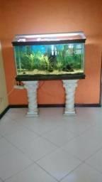 Aquario 1,20x0,60x0,40m