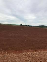 Fazenda venda terra roxa, Só 2.000 sacas por alqueire em Marumbi - PR
