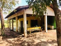 Vendo chácara no distrito de Santo Antonio