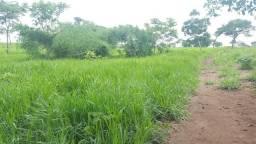 Alugo arrendo fazenda