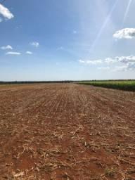 Fazenda Extra 33,5 Alqueires | 30 na lavoura | Oport. Única