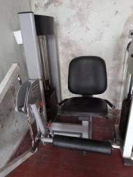 Título do anúncio: Cadeira extensora musculação com carga