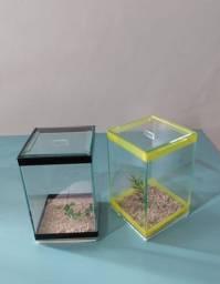 Aquario - Rações - Bettas