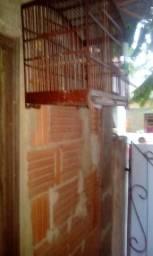 Três gaiolas pra pássaro boas