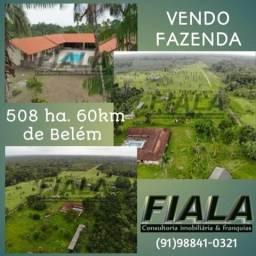 Fiala Fazenda 508 hectares a 60km de Belém