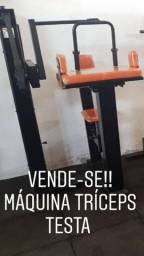 Máquina tríceps testa
