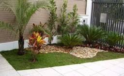 Plantação de grama em terrenos e jardins