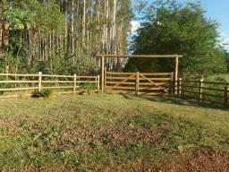 Título do anúncio: Chacara 5 hectares a 23 km de Campo Grande Ms 455