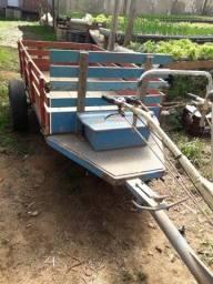 Título do anúncio: micro trator tobatta (tobata) TR 13 diesel com rotativa e caretinha