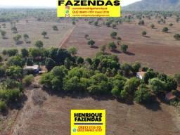 Título do anúncio: Sítio de 21 alqueires todo plano barro vermelho depois Taquaralto em Palmas