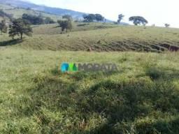 FAZENDA A VENDA - 169,40 hectares - SÃO LOURENÇO (MG)