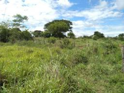 Fazenda as margens Canabrava