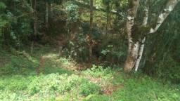 Maravilhoso Sítio de 6,7 Hectares, no Bairro Cubatão, Marmelópolis-MG