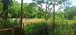 Lindos terrenos rurais de 2 hectares em condomínio a partir de R$59.000,00 + Parcelas
