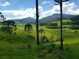 Título do anúncio: Terreno Para Pecuária e Plantio em Bom Retiro