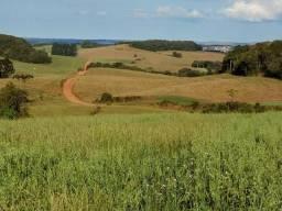 Fazenda 2.200 scs 120 alq reg guarapuava