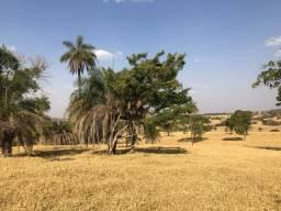 Fazenda em Goianira