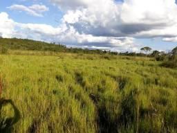 97 há (20 alq) Oportunidade para você se tornar produtor rural com excelente localização