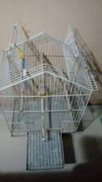 Viveiro duplex dobrável com Bandeija p/ Calopsita