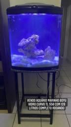 Título do anúncio: Vendo aquário marinho boyu vidro curvo TL 550 com 128 litros completo rodando