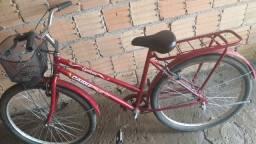 Bicicleta CAIURU