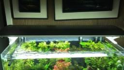 Luminária para aquário plantado