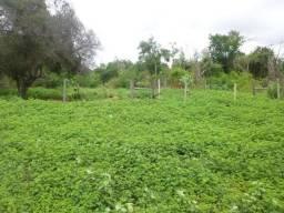 Fazenda com 425.93 hectares em Manga/MG
