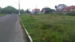 Alugo terreno limpo a 50metros da faixa