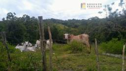 Chácara à venda em Araçatuba, Imbituba cod:103