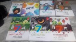Coleção de livro do sétimo ano